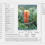 SppDb plant database