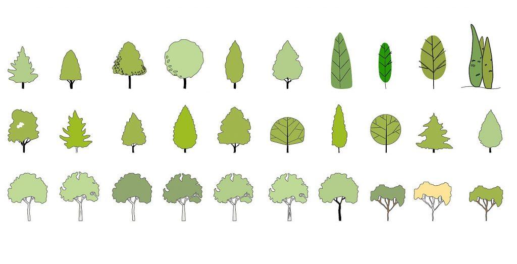 Tree symbols in elevation